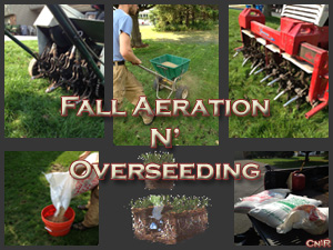 Aeration Coupon coming
