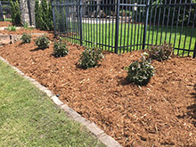 CN'R Lawn N' Landscape - Landscaping Mulch and Perrenial Planting, shrubs
