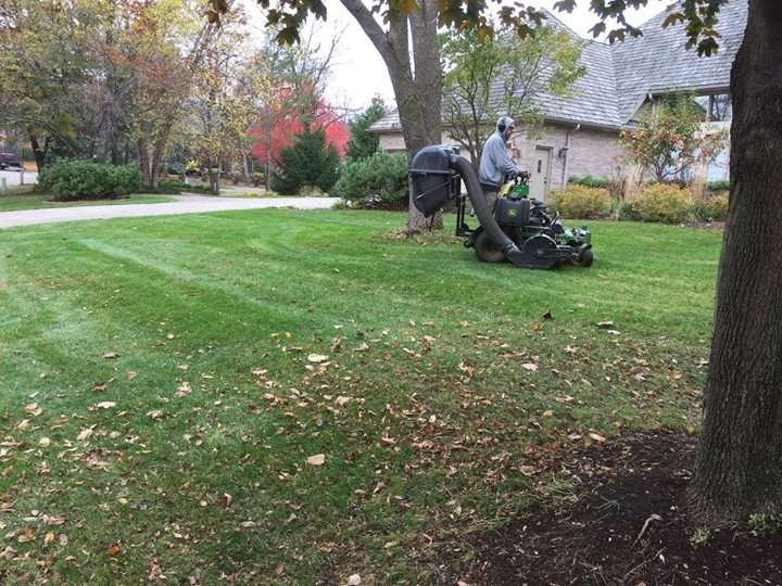 Fall Lawn And Property Cleanup