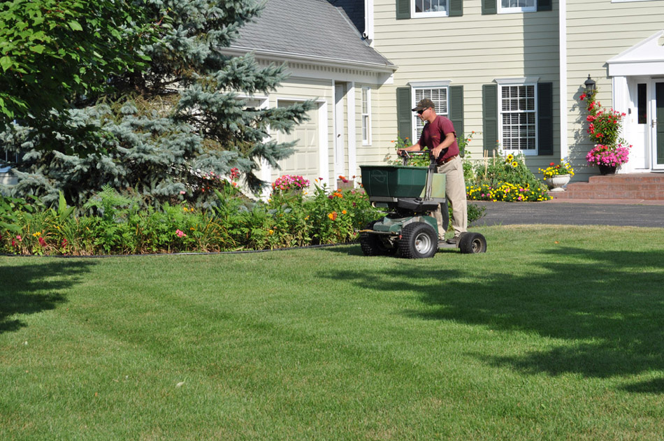 CN\'R Lawn Fertilizer and Weed Control Service